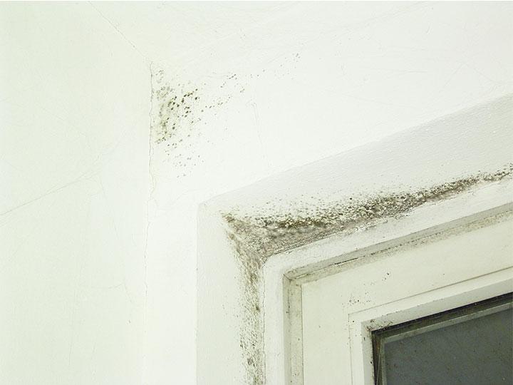 Schimmel in der Ecke über dem Fenster / Schimmelsanierung / Schimmelpilzbekämpfung